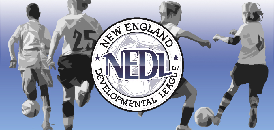 Introducing:  The 2019 New England Development League (NEDL)
